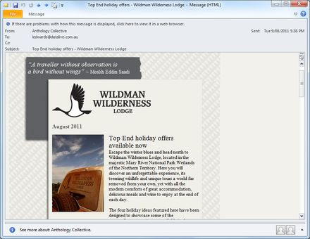 Wildman E-Newsletter
